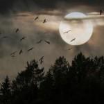 Scorpio New Moon October 2014