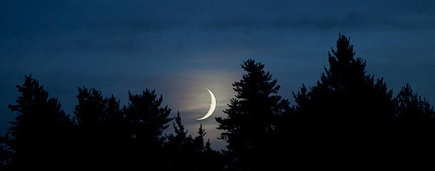 New Moon Photo Through Trees