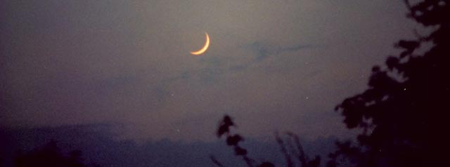Night New Moon in Seattle Photo