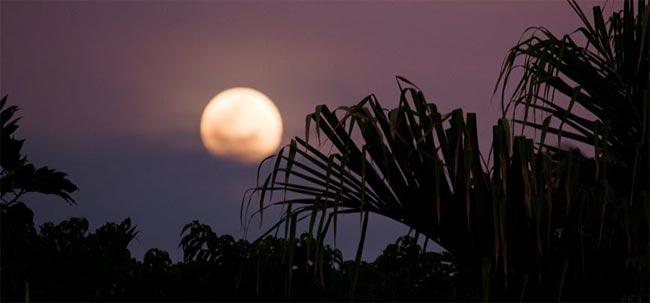 Full Moon Over Hawaii Photo