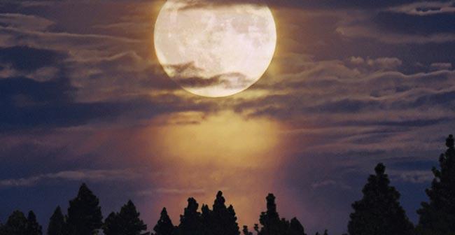 Full Moon Eclipse Photo