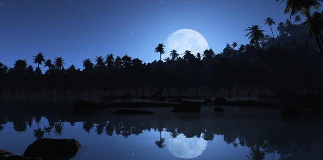 Photo of Full Moon Lunar Stillness